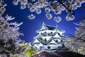 Hikone Castle during the spring season in Hikone, Japan.