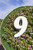 Number 9 On Flower Background