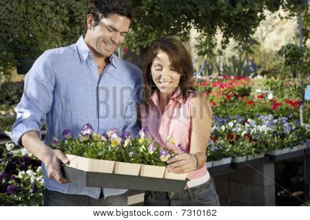 Couple choosing a variety of  potted plants at nursery
