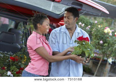 African American Couple choosing plants at nursery