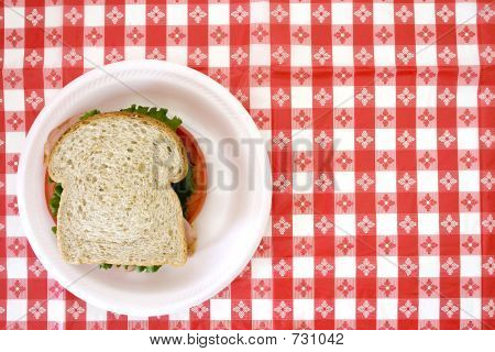 Sandwich On Red Checkered