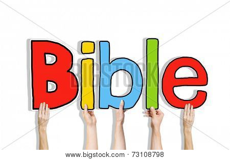 Diverse Hands Holding the Word Bible