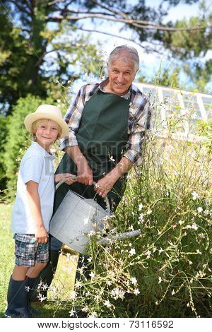 Senior man with grandkid watering plants