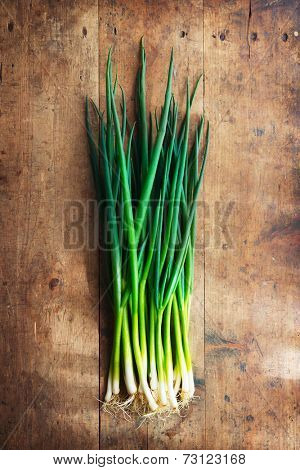 Fresh harvested bundle of scallions on a old grungy table.