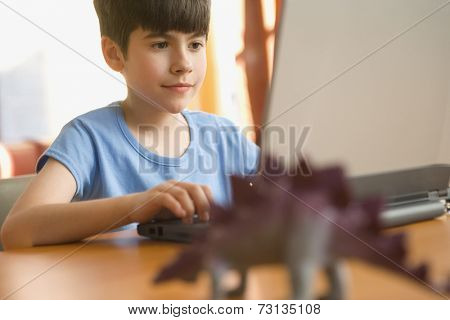 Boy sitting at desk with computer