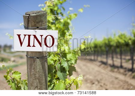 Vino Sign On Post at the End of a Vineyard Row of Grapes.