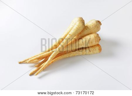 parsley roots on white background