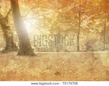 Vintage autumn landscape background