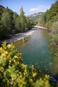 picture of fly rod  - Upper view of fly fisherman fly - JPG