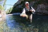 picture of fly rod  - Fly fisherman catching a fario trout in river - JPG