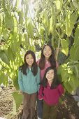 picture of three sisters  - Three young Asian sisters smiling outdoors - JPG