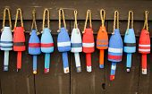 picture of lobster boat  - Colorful buoys on a wall of a shake in Maine - JPG