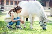 stock photo of pony  - young beautiful brunette girl play with white pony horse in country farm - JPG