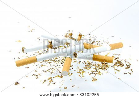 Tobacco Of A Cigarette