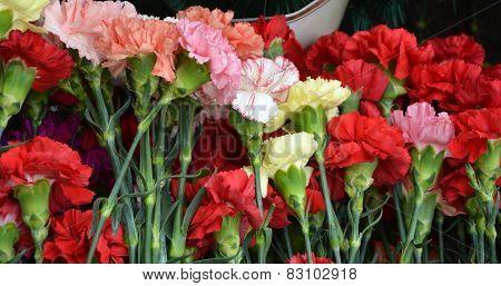 Pinks Flowers At The Memorial