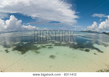 Fish-eye View Of Reef On Seychelles