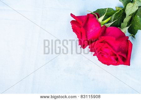 Natural Red Roses With Water Drops Background