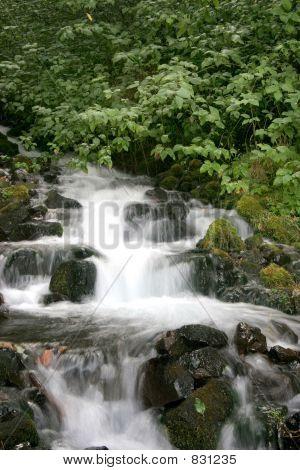 Cachoeira do Latourell