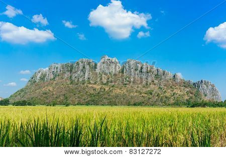 Rice Field Among Rock Mountain