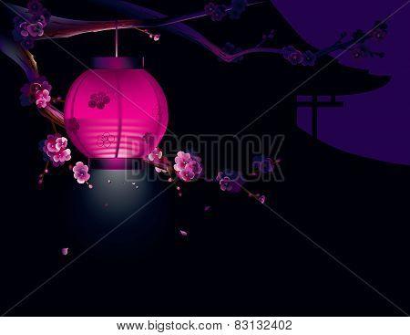 Sakura and paper lantern