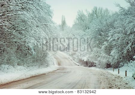 Winter Country Road In The Snowy Woods.