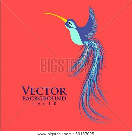 Vector colibri. Graceful hummingbird. Fashionable design eps10.