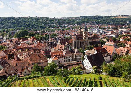 Beautiful geman city and wine fields