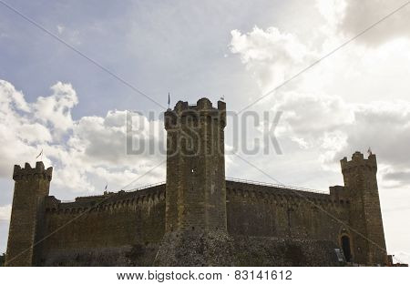 Montalcino Castle, Overview