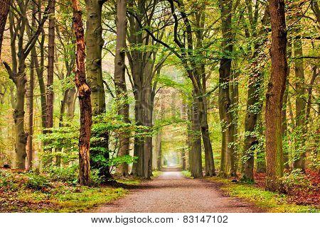 Trees Monument