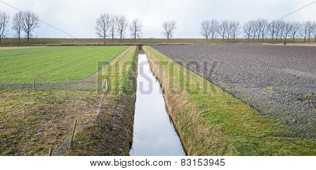 Farmland Divided By A Ditch