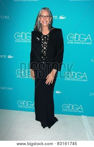 LOS ANGELES - FEB 17:  Deborah Nadoolman Landis at the 17th Costume Designers Guild Awards at a Beverly Hilton Hotel on February 17, 2015 in Beverly Hills, CA