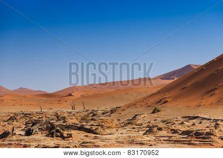 Deadvlei Valley Sossuvlei Namibia