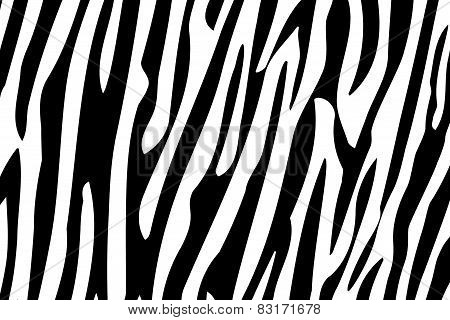Zebra Stripes Seamless Pattern.