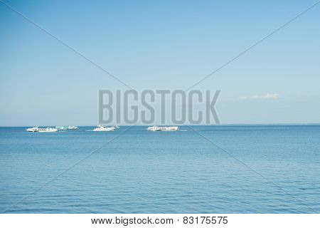Image of white modern yachts in sea