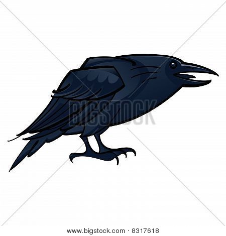 Raven or Crow