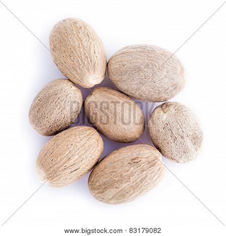 Nutmeg Isolated On A White Background