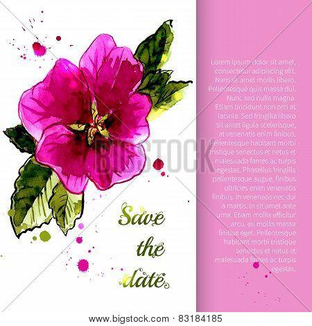 Illustration with flowers stem-rose
