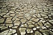 stock photo of water shortage  - little water left on dried cracked earth - JPG