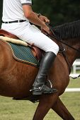 stock photo of girth  - Close up of sportsman sitting on the horse during competition - JPG