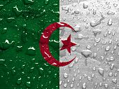 pic of algeria  - a flag of Algeria with rain drops - JPG