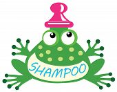picture of baby frog  - shampoo frog for babies and little kids - JPG