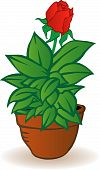 stock photo of pot plant  - Vector illustration a flowerpot with a green flower on a white background - JPG
