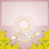 pic of mimosa  - an illustration of Mimosas flower background for women - JPG