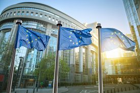 pic of union  - European union flag against parliament in Brussels - JPG