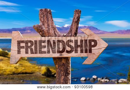 Friendship direction sign with landscape background