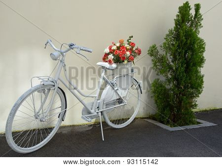 Ladies Bicycle With Flowers Decoration Outdoor Bike