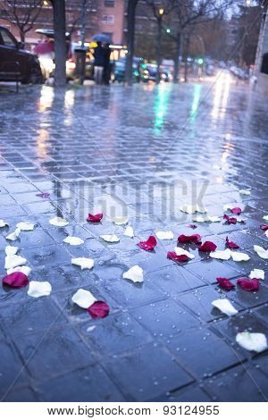 Confetti On Ground After Wedding Marriage Ceremony In Rain