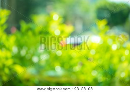 Beautiful Abstract Natural Spring Green Bokeh Background, Blur Effect For Windows