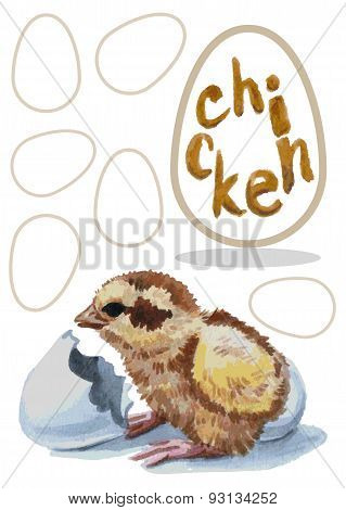 Chick Hatched Watercolor