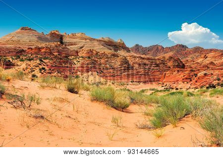 The Wave in Arizona, rocky desert rock formation